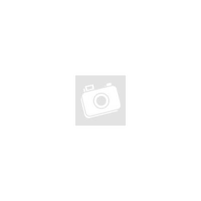 Fine Dog Mini csirke rudak 80g